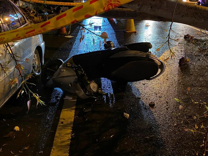 影/無風無雨路樹倒 台南女騎士遭砸頭喪命