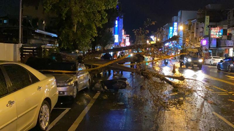 ▲延平國中的一顆菩提樹,19日晚間突然倒塌,砸中2輛汽車、1輛機車,釀成1死1傷。(圖/記者陳聖璋翻攝)