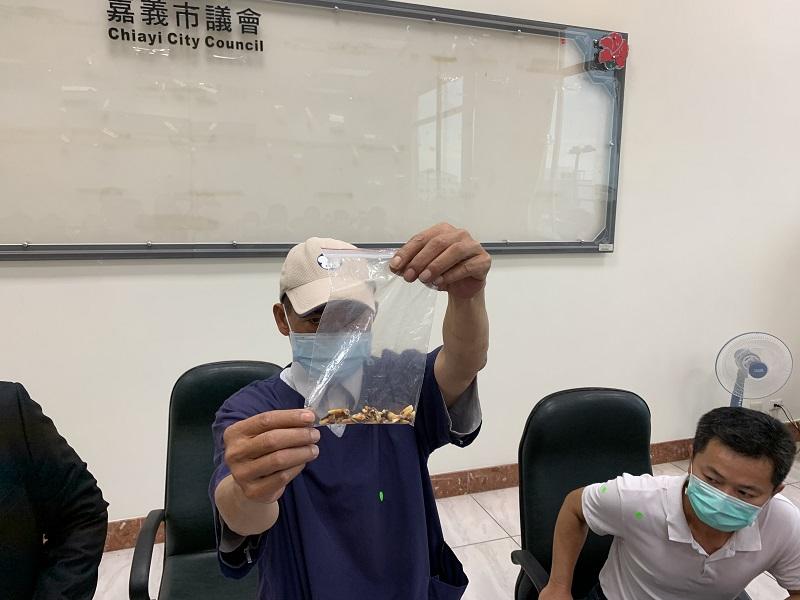 嘉市府陳姓獸醫師遭霸凌,提掉落牙齒控訴不法。
