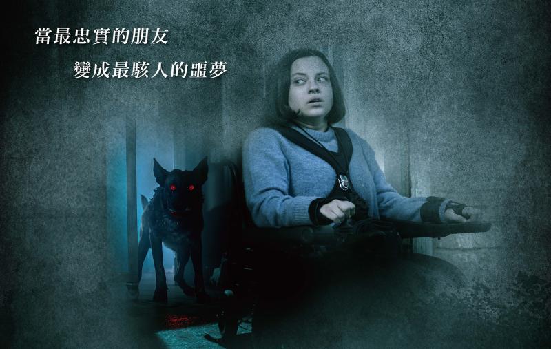 ▲女主角被自己的狗狗追殺。(圖/水元素)