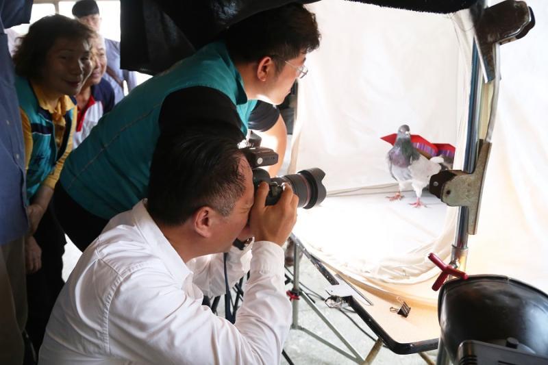 嘉義縣長翁章梁化身攝影師,為義竹鴿笭王拍英挺沙龍照。