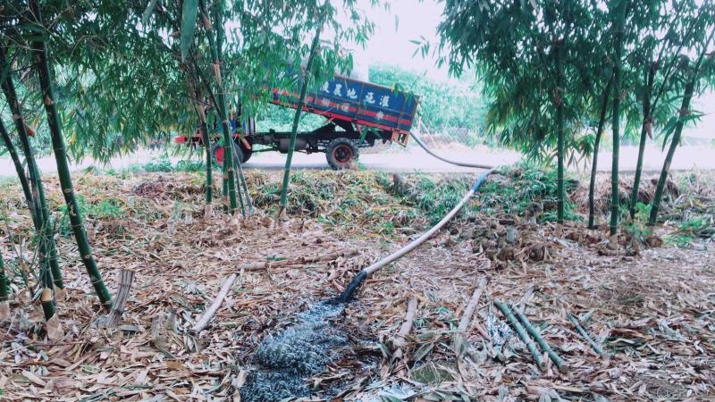 ▲畜牧糞尿廢棄物可以回歸農田作為肥料,滋養作物。(圖/記者蘇榮泉攝,2020.05.25)