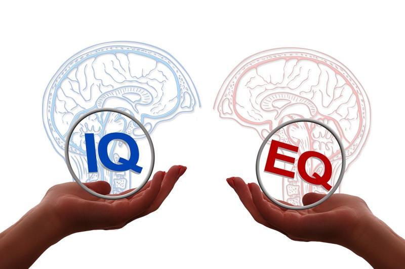 網路瘋傳超準心測!10問題秒解你是「高IQ還是高EQ」?