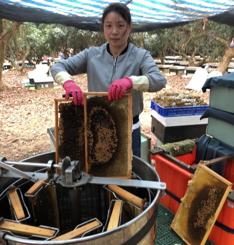 女力人物/專屬台灣的甜蜜滋味 孫霞打造高品質國產蜂蜜