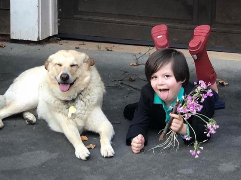 5歲弟想婚!挑吉日盛裝「求婚愛犬」:我長大牠就不在了