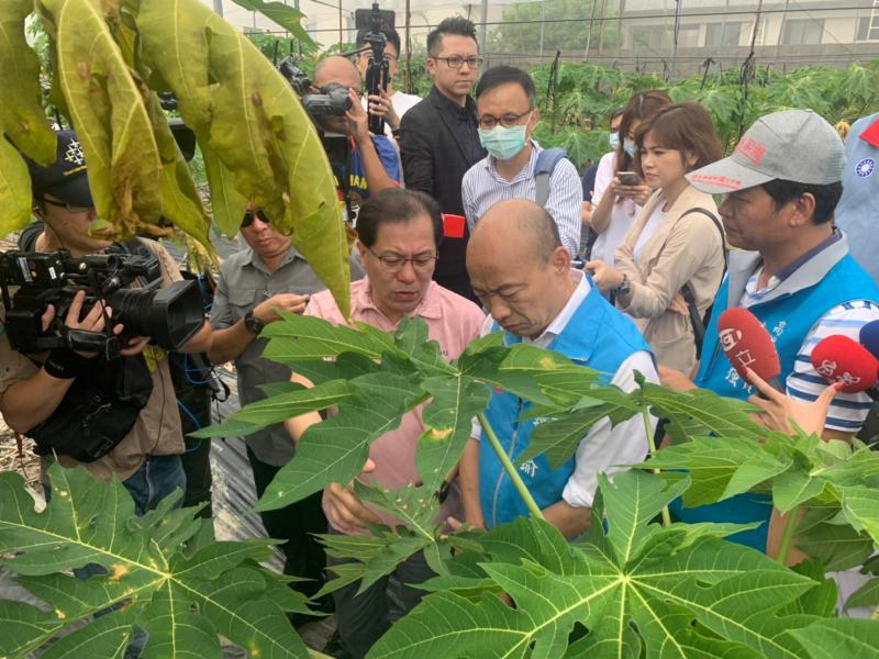 罷免投票日 韓國瑜視察木瓜農損稱「尊重投票結果」