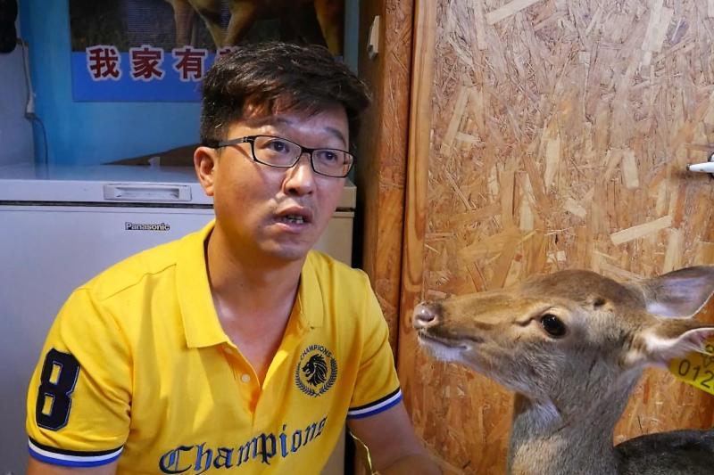 ▲咖啡廳負責人李鍾靈說,自從小梅花鹿進駐後,店內的業績成長近4成。(圖/記者蔡若喬攝)