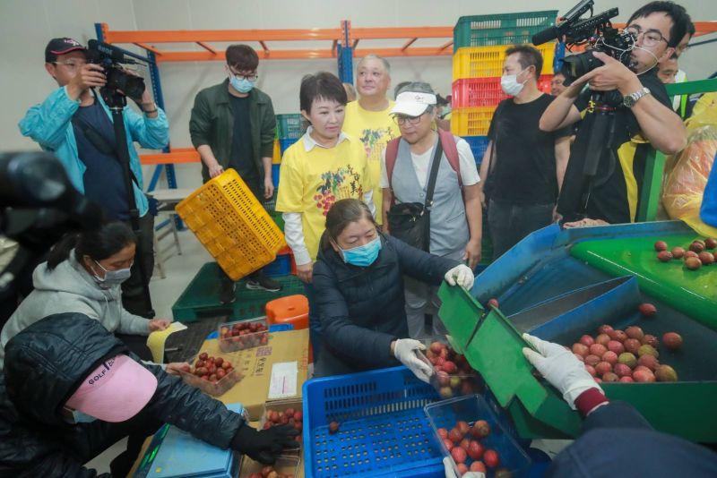 4°C低溫保鮮 外銷級「台中美荔」上市