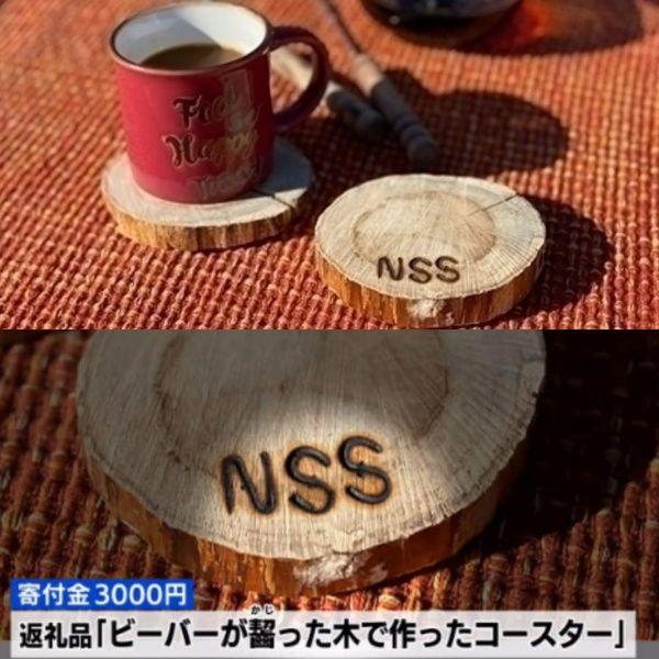 ▲木頭杯墊(被河狸咬過的)(圖/campfire@ノースサファリサッポロ、電視截圖)