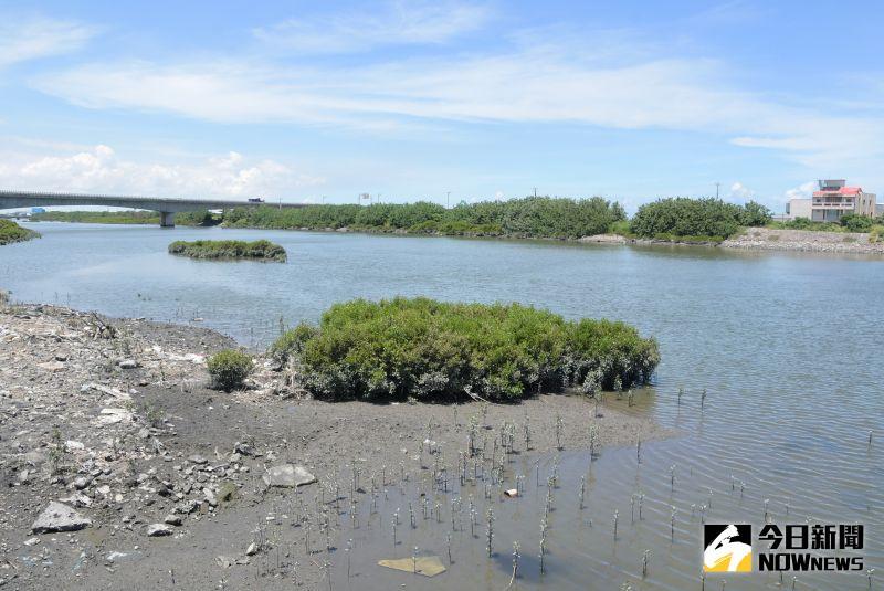 ▲保育巡守隊將不定期巡守,以確保舊濁水護魚河段生態不受破壞。(圖/記者陳雅芳攝,2020.06.18)