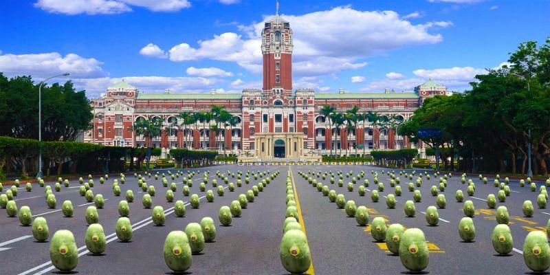 總統府揪端午上凱道立瓜 999顆西瓜讓你帶回家
