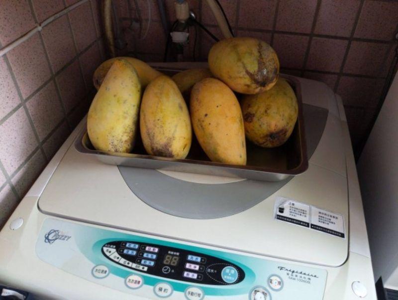 ▲洗衣機上也能看到芒果的蹤影。(圖/翻攝