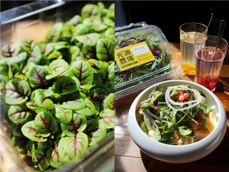 ▲賴經理認為,選擇台灣在地農場新鮮直送蔬菜食材,口感品質更放心,而且營養價值更高。(圖/資料照片)