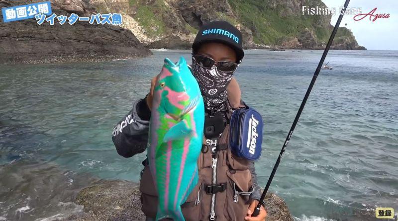 ▲日本男在沖繩釣到「繽紛怪魚」,引發熱議。(圖/翻攝自「フィッシングギャング/宮城梓」Youtube 影片截圖)