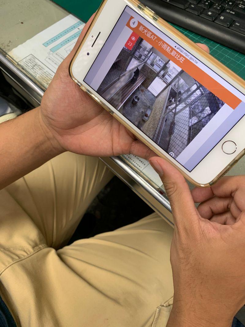 新北動保處設「智能認養」 滑手機就能觀察毛寶貝