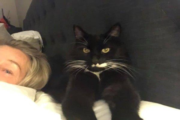 ▲黑白貓:朕決定陪睡以感謝妳的款待!(圖/FB@Rachael