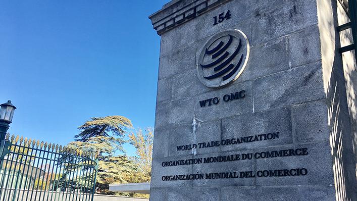 8國提名WTO秘書長改選 候選人傳希望台灣支持