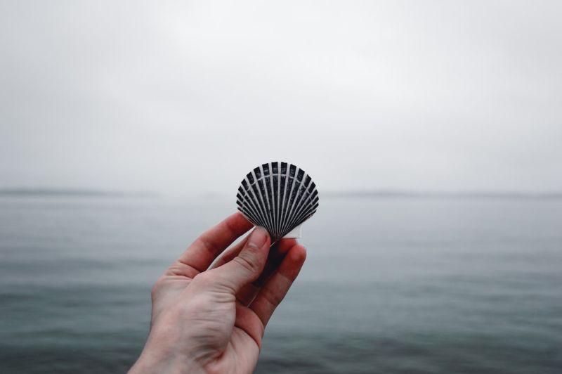 天生愛美!研究發現:人類12萬年前就開始用貝殼做項鍊