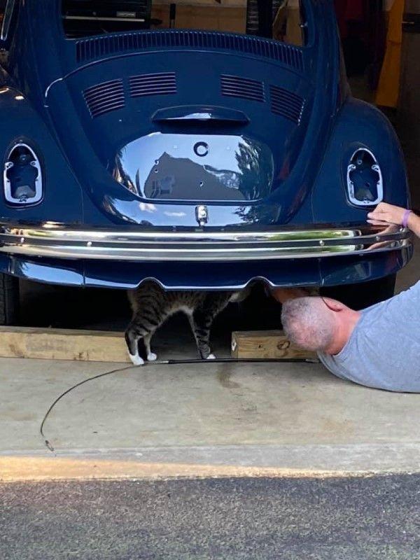 ▲日前還發現克勞斯竟然趁先生修車時,站在一旁監工!(圖/FB@Amy