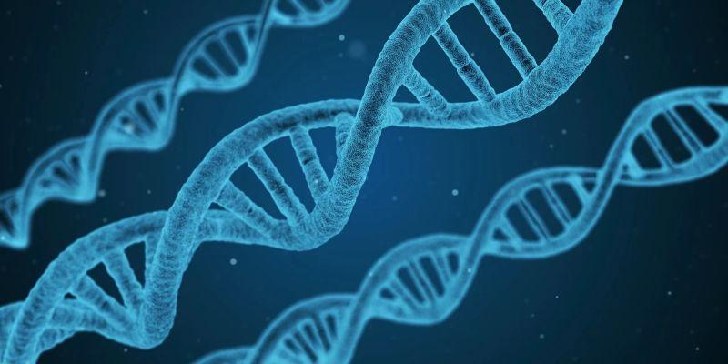 ▲雲南省「青少年科技創新大賽」有小學生已研究癌症基因獲獎,被爆出造假。(示意圖/翻攝自 Pixabay )