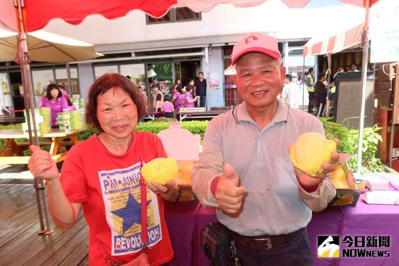 ▲埔心鄉70歲農民黃文松和66歲妻子洪瑞汝,7年前開始種金蜜芒果。(圖/記者陳雅芳攝,2020.07.18)