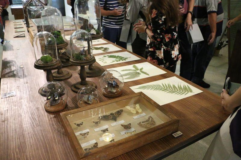 ▲新北市坪林茶業博物館暑期推出「茶山學」特展今(21)日開幕,搜羅台灣7大博物館的珍藏品,包含動植物標本、漂浮植物小宇宙等。(圖/茶葉博物館提供)