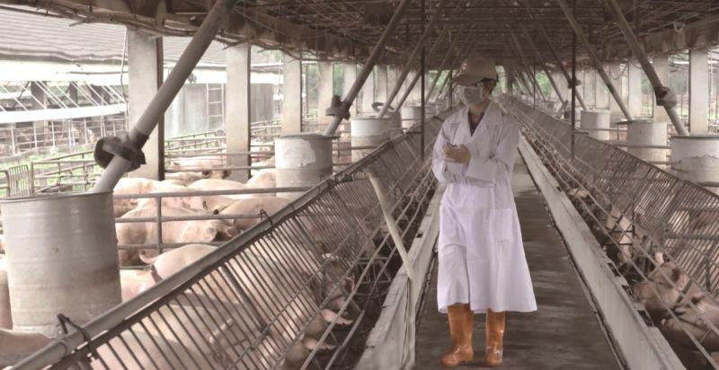 台灣豬拚外銷/<b>台糖</b>籲不能急 「滷肉飯價格合理」是前提