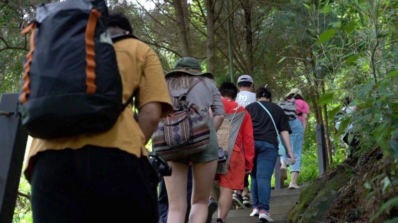 暑假「安心旅遊」 探索和平埋伏坪登山步道祕境