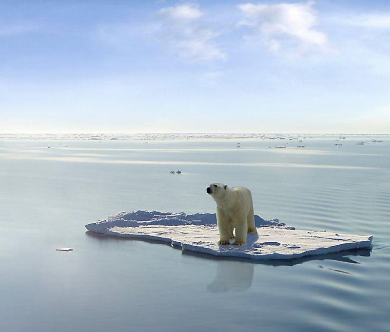 ▲研究人員強調,幾十年內北極夏季恐將無冰。(圖/翻攝自The Conversation)