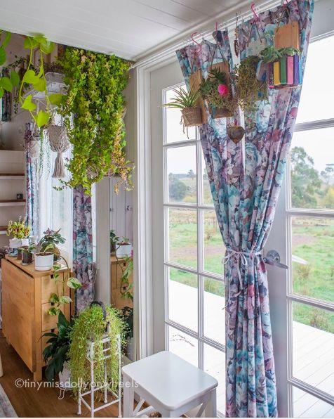 ▲Dolly也時常在小房子裡種植花花草草。圖/授權自IG