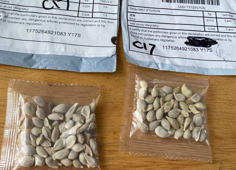 ▲美國多地近日收到疑似來自中國的不明種子包裹,現在還入侵法國。(圖/翻攝自推特)