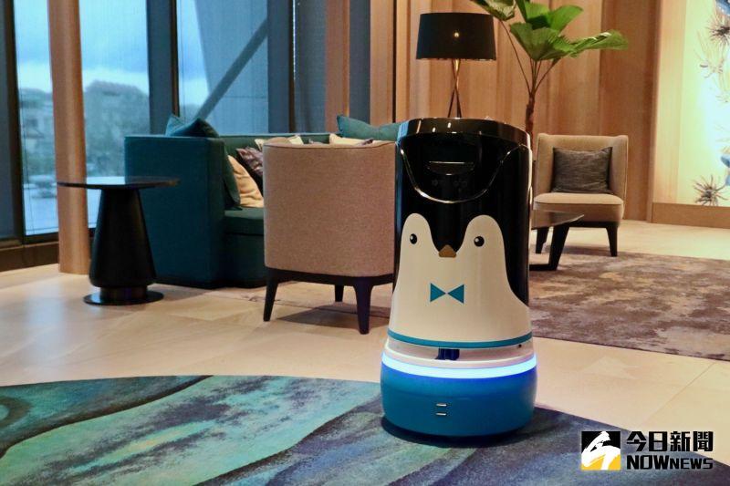 ▲飯店引進超萌的企鵝機器人「