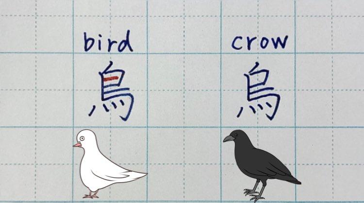 為什麼「烏」比「鳥」少1筆畫?日本老師神解:長知識了