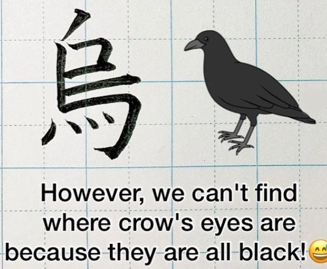 ▲日本老師解釋為何烏比鳥少一劃。(圖/翻攝自@kayoshodo的推特)