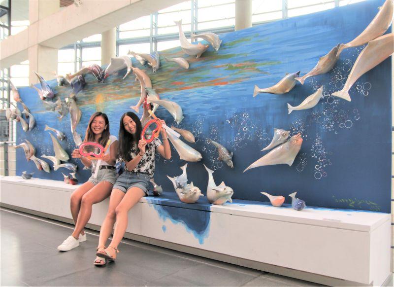 ▲游忠平以中華白海豚為主角的《愛相隨》,66隻姿態生動、喜歡跳躍的海豚連結成愛心,為藝術季最吸引民眾搶拍的創作之一。(圖/新北市鶯歌陶瓷博物館提供)