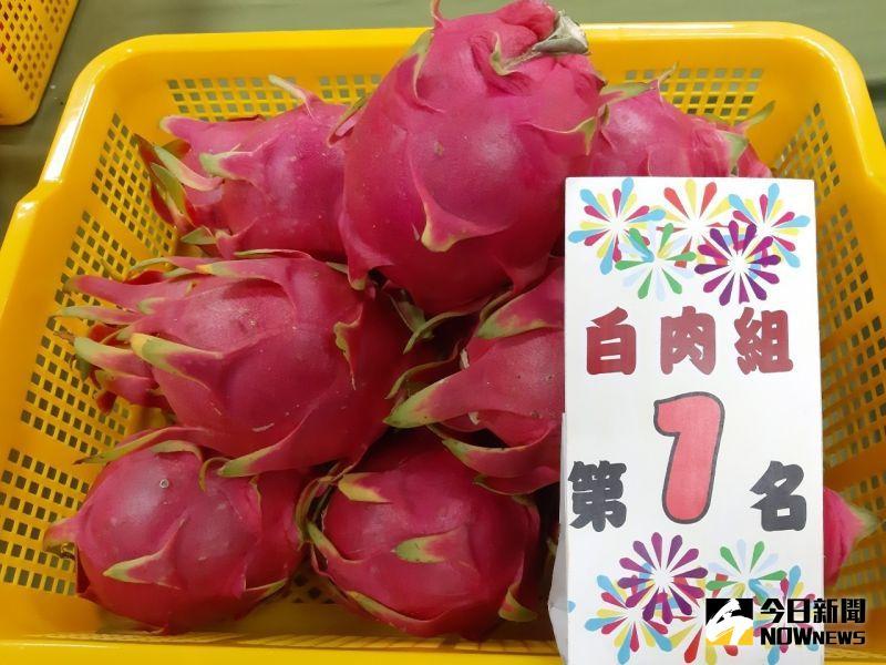 ▲109年度火龍果評鑑競賽,白肉組:第一名:陳柄叡。(圖/記者陳雅芳攝,2020.07.30)