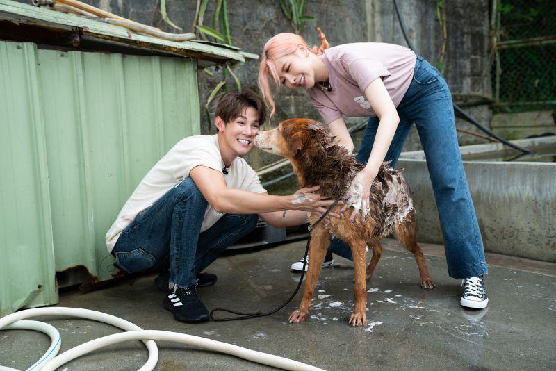 ▲安心亞(右)、夏和熙暖心幫狗狗洗澡。(圖/CHECK2CHECK提供)