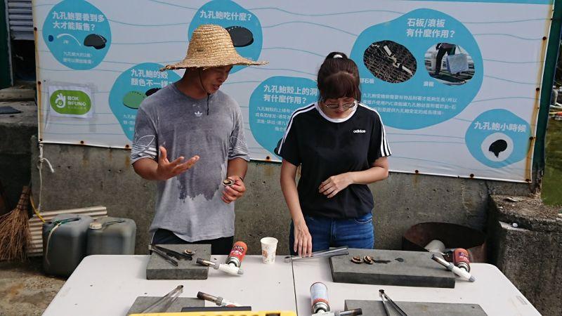 到<b>貢寮</b>來場「食魚教育小旅行」 鮑魚餵菜、親製鮑魚料理