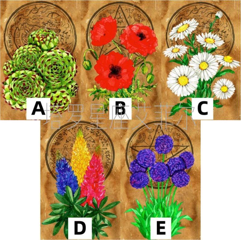 ▲選出最喜歡的花朵,測你下半年擁有哪種「過人好運」?(圖/翻攝自塔羅牌老師艾菲爾臉書)