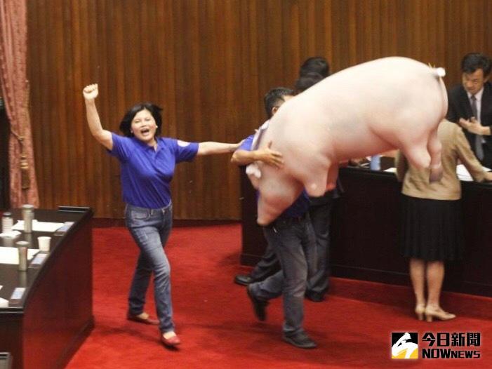 政府拿美豬牛換台美友好?學者批:溝通沒做好並不負責