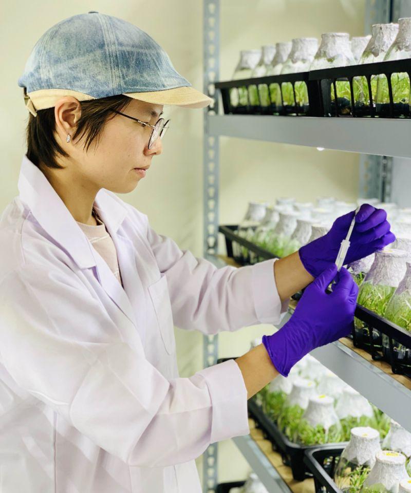 宜縣地方產業創新<b>研發</b>補助 15家廠商上榜