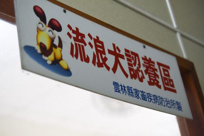 ▲2017年開始,台灣的公立收容所領養率已經開始下降,更加重了收容所持續爆滿的狀況。(圖/記者陳明安攝)
