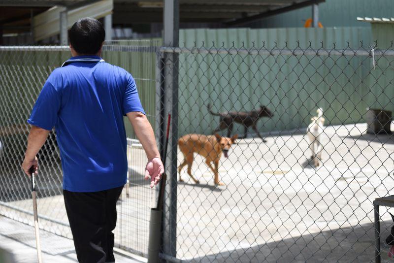 ▲雲林縣並沒有公立收容所,而是靠著當地的獸醫院和民營代養場協助。(圖/記者陳明安攝)