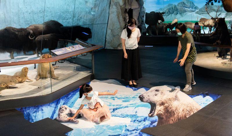 ▲動物廳裡的3D立體地景「北極熊覓食」,生動的模樣似要將小海獺一口吞下(圖/記者林怡孜攝,2020,08,17)