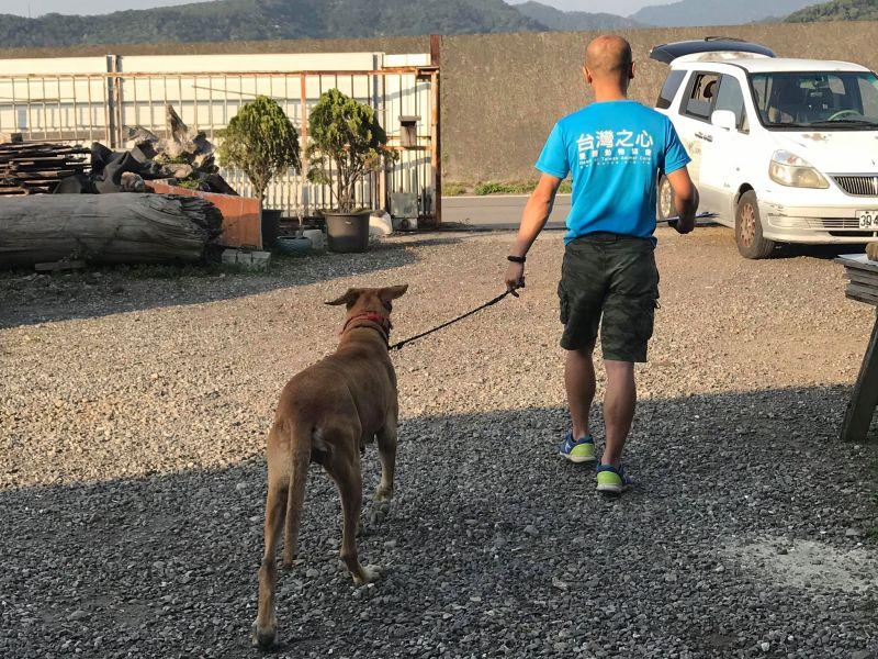 ▲逐戶訪查時協助民眾處理犬貓絕育事宜。(圖/台灣之心愛護動物協會提供)