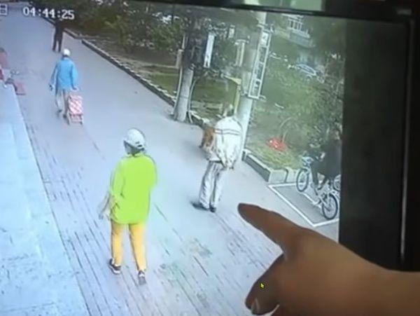 ▲老人和狗狗一起出門散步。(圖/Facebook@The