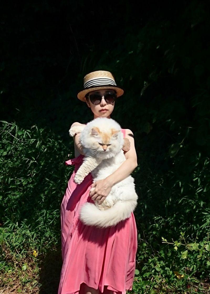 ▲當女主人抱起,白貓體型是她的半身大!(圖/Twitter@WeUADL1Ws02osvw)