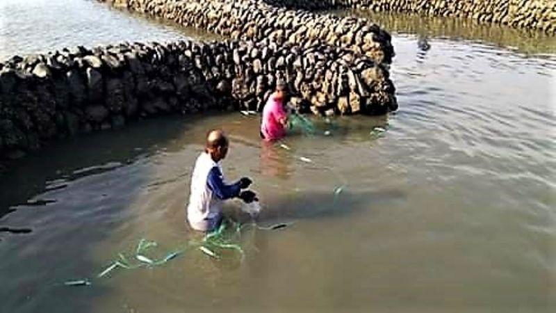 ▲七美鄉民搭乘小舢舨到雙心石滬抓魚,享受上天給七美人最棒的禮物。(圖/七美民眾提供)
