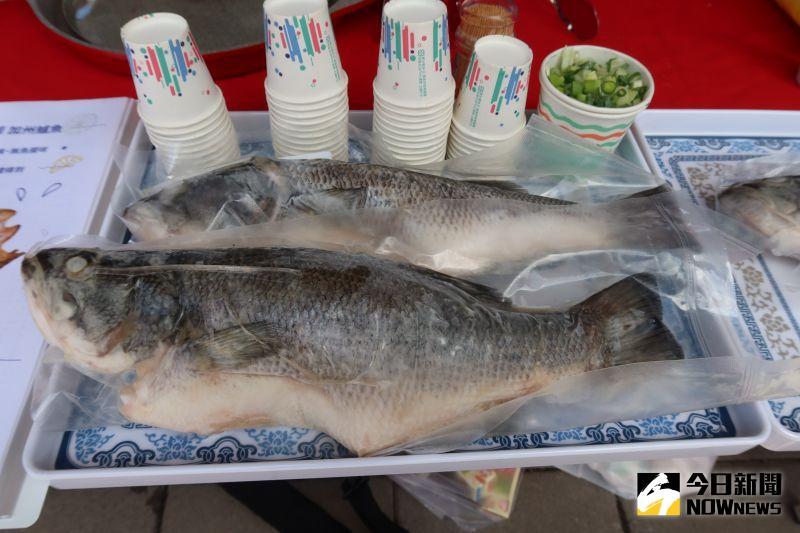 ▲要讓加州鱸在成長過程中餵食加入有機檸檬成分的特調飼料,因此鱸魚油脂中含有檸檬酸。(圖/記者陳雅芳攝,2020.08.23)
