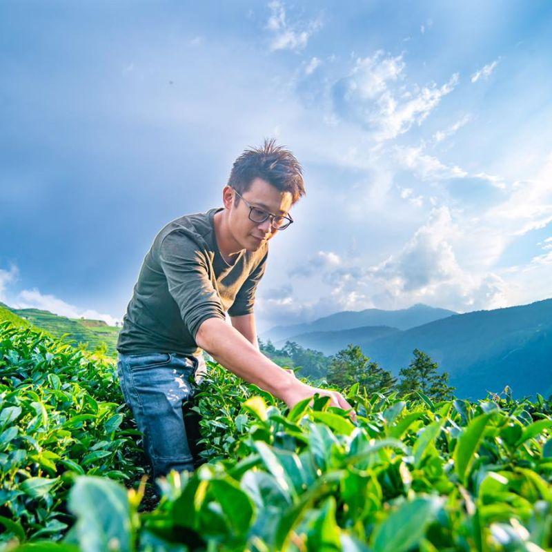 品茗頭家/承繼父志 陳孟智用<b>梨山</b>茶擦亮台灣品牌